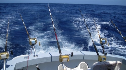 boat charters in gran canaria