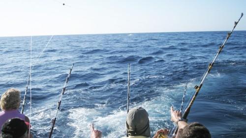 Sport Fishing boat in gran canaria