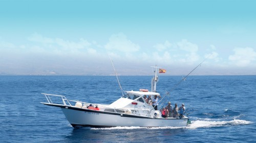 white striker sport fishing gran canaria