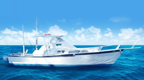 white striker sport fishing