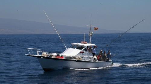 white striker sport fishing blue marlin charters